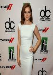 Amy Adams Red Carpet Photos - 17th Annual Hollywood Film Awards