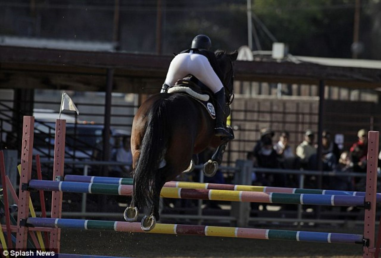 Female horse ass - photo#25