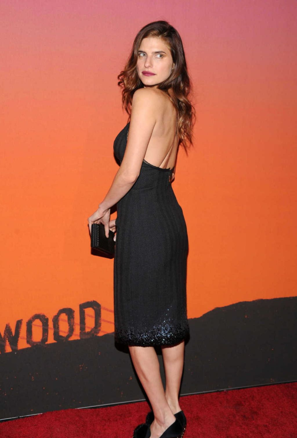 Lake Bell Red Carpet Photos - 2013 Whitney Gala And Studio Party in New York City