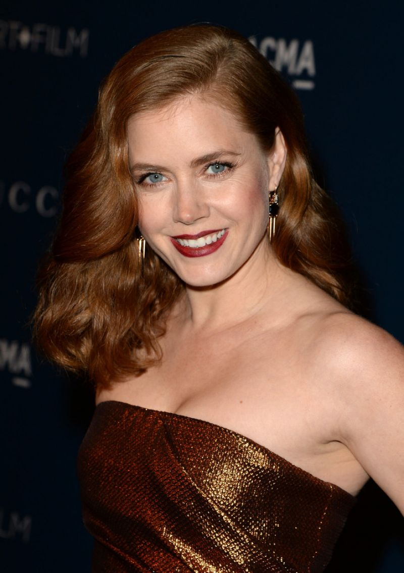 Amy Adams Red Carpet Amy Adams