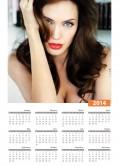 2014 Calendar Celebrity Wallpapers