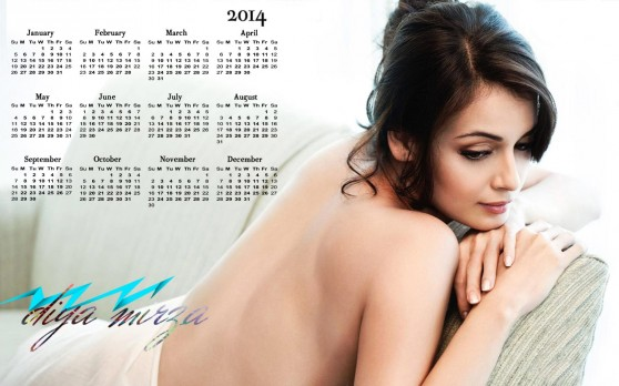 2014 Calendar Celebrity Wallpapers