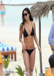 Demi Moore Bikini Photos - Mexico, December 29, 2013