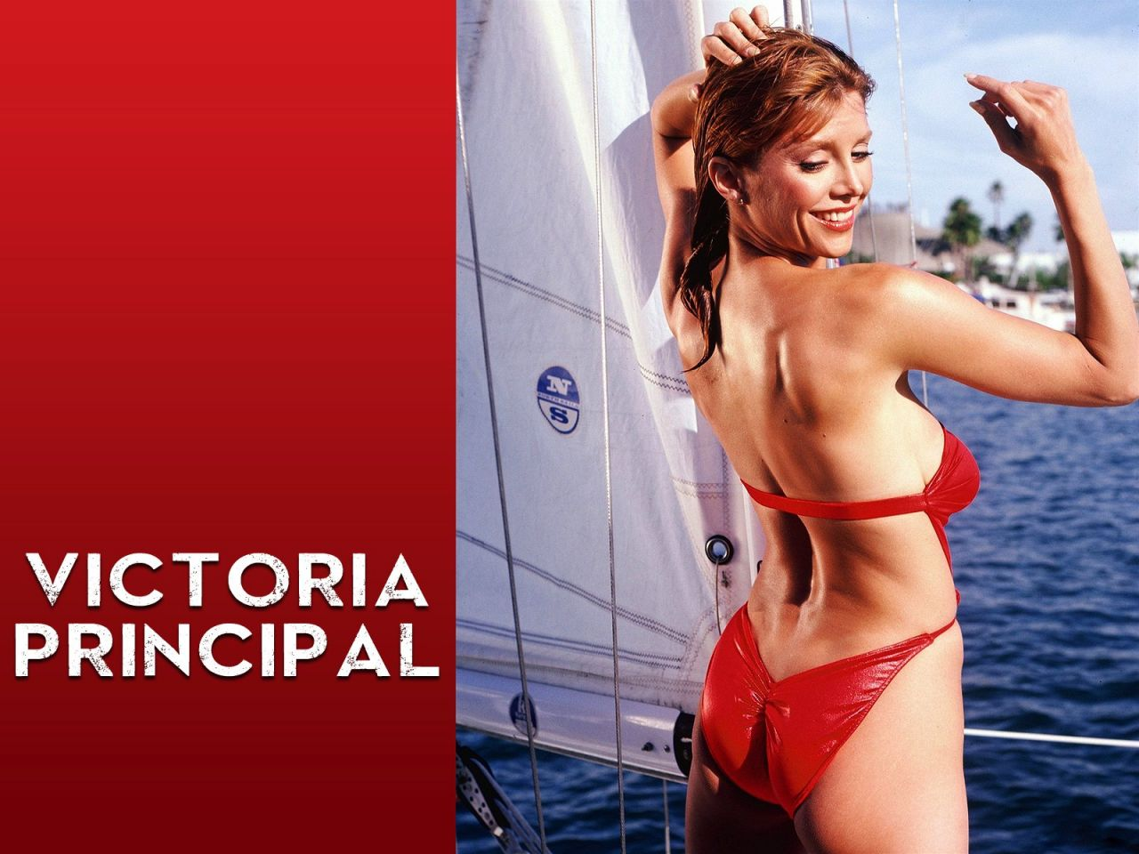 Victoria Principal Hot Wallpapers (+3)