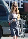 Amanda Seyfried Shows Off Her Legs - West Hollywood, January 2014