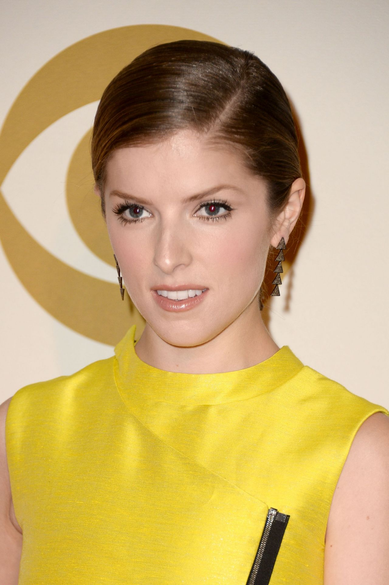 Anna Kendrick - A GRAMMY Salute To The Beatles in Los Angeles, January 2014