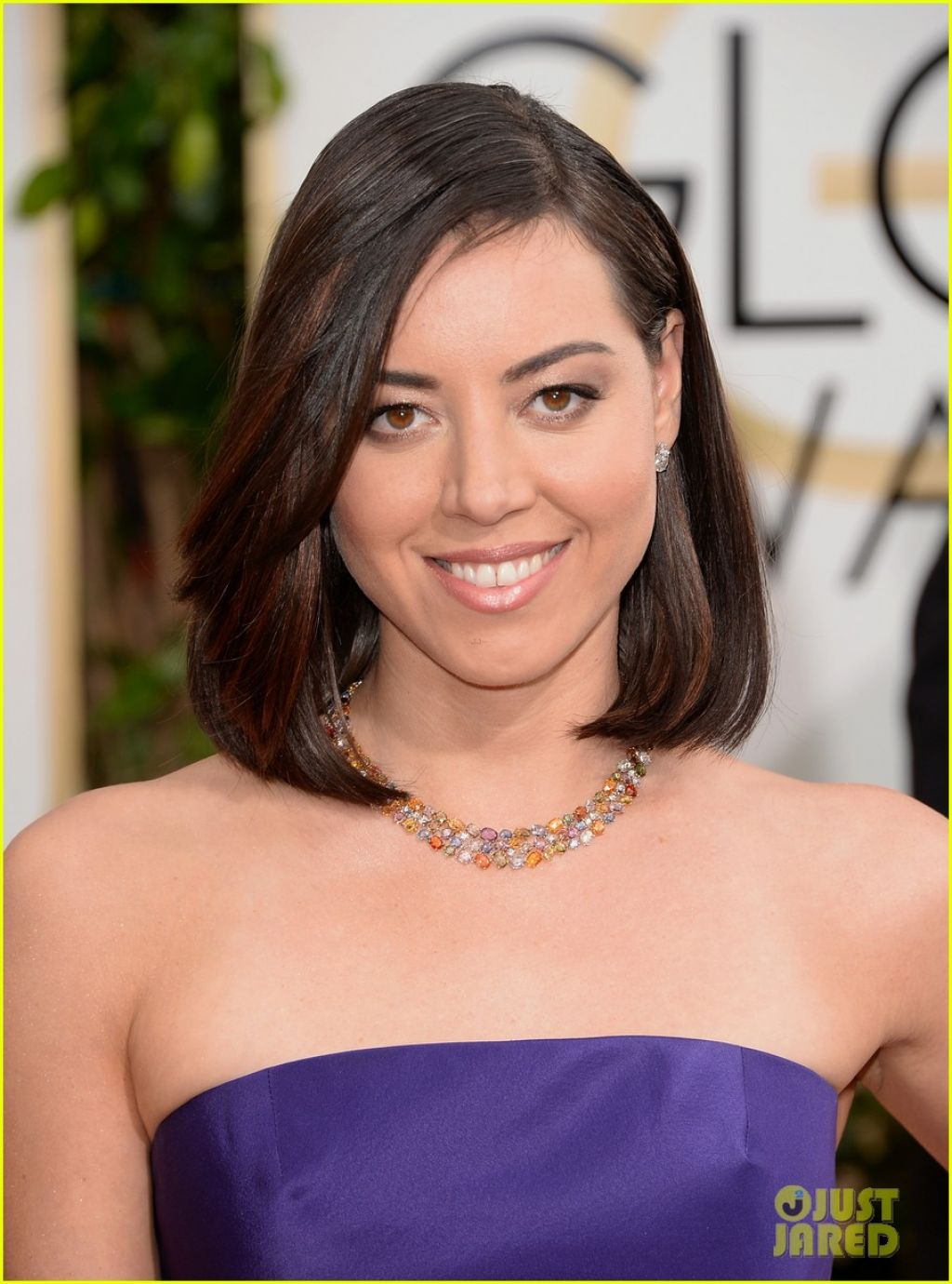 Aubrey Plaza Wears Oscar De La Renta At Golden Globe