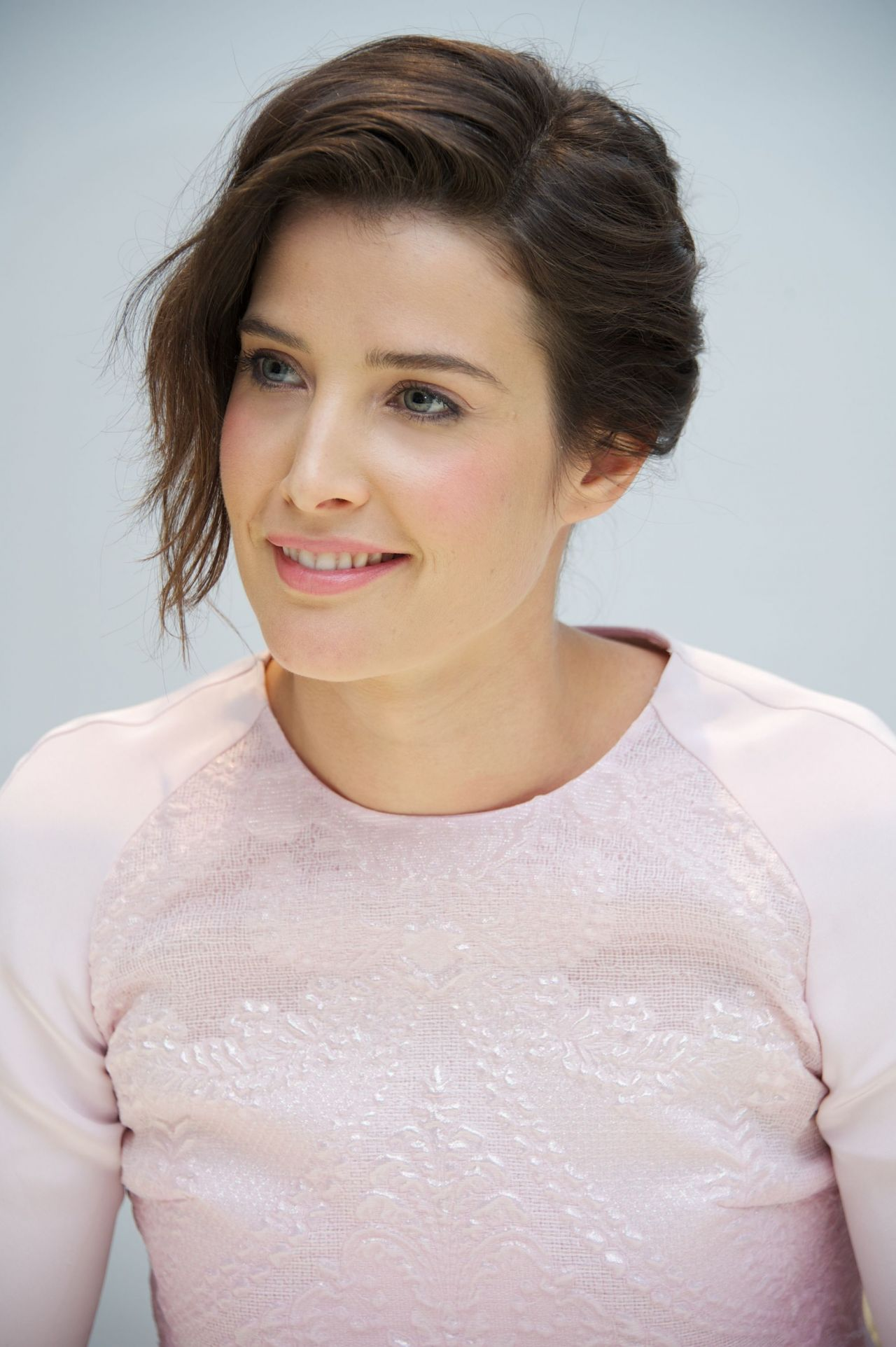Cobie Smulders - DELIVERY MAN Press Conference Portraits (2013)