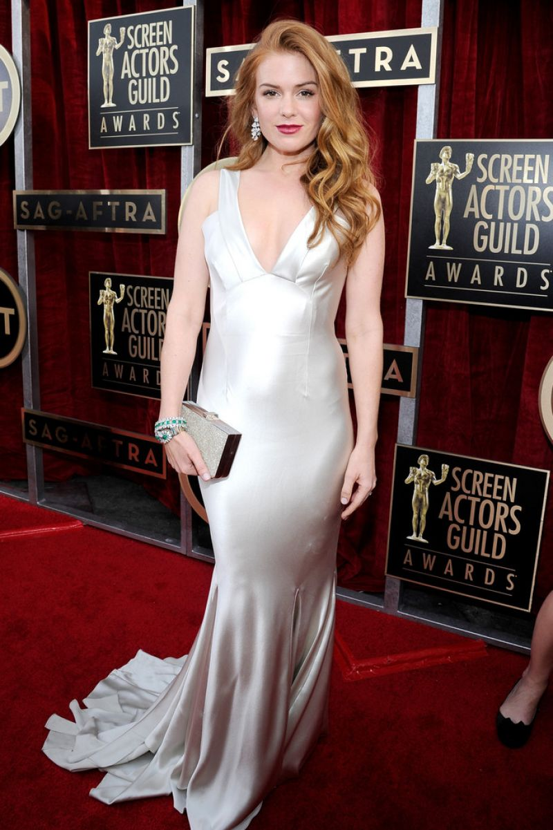 Isla Fisher Wears Oscar De La Renta Dress At 2014 Sag Awards