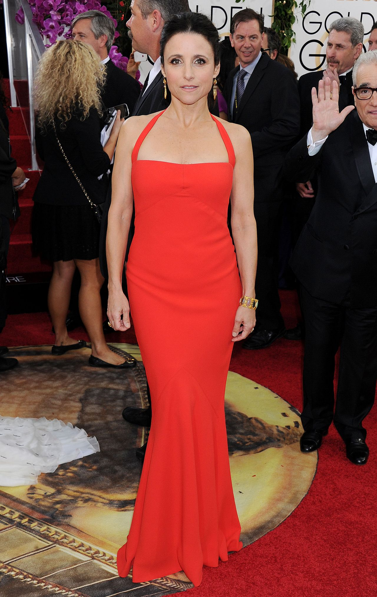 Julia Louis-Dreyfus Wears Narciso Rodriguez at 2014 Golden Globe Awards