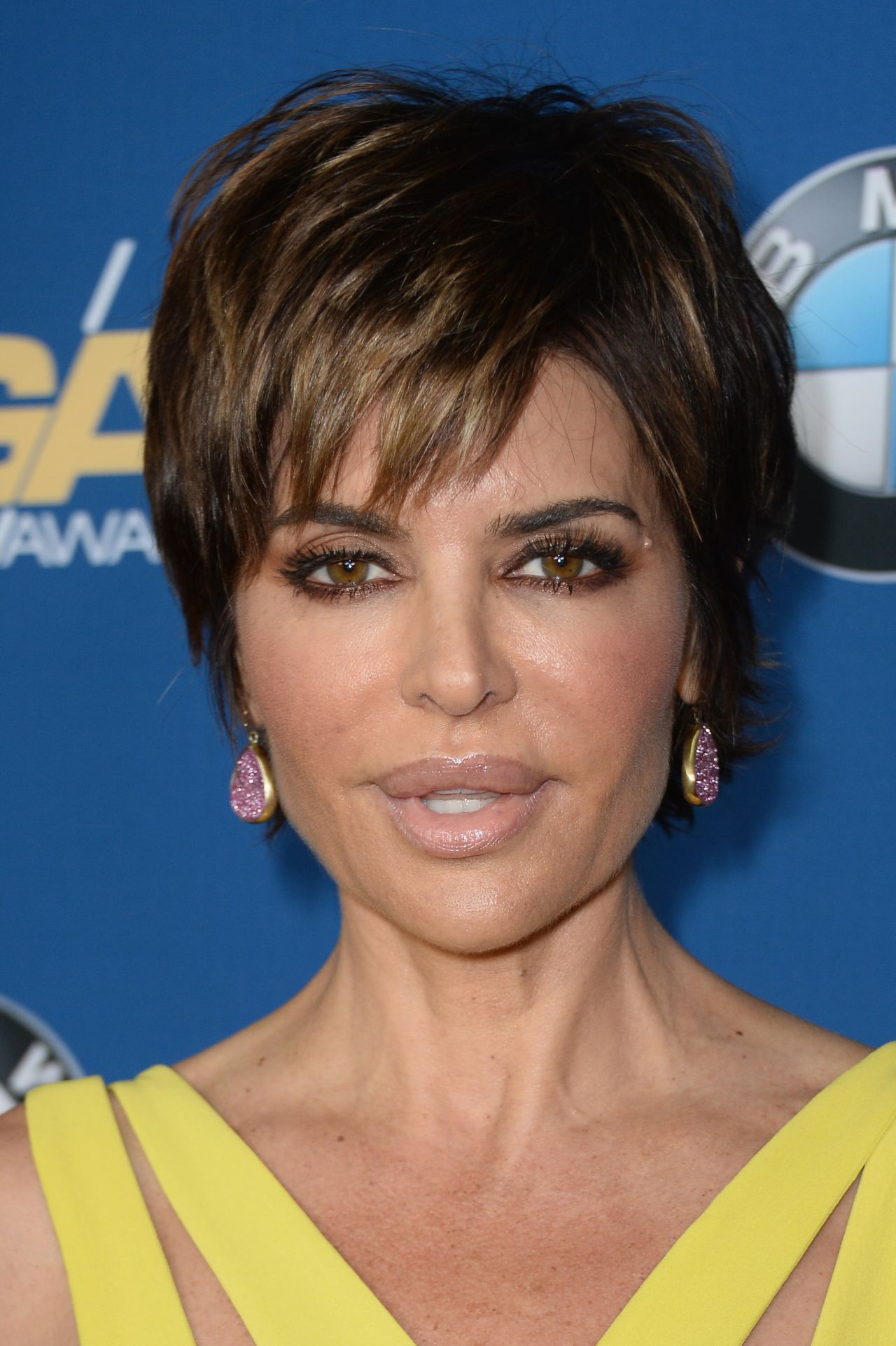 Lisa Rinna - Directors Guild Of America Awards in Century City, January 2014