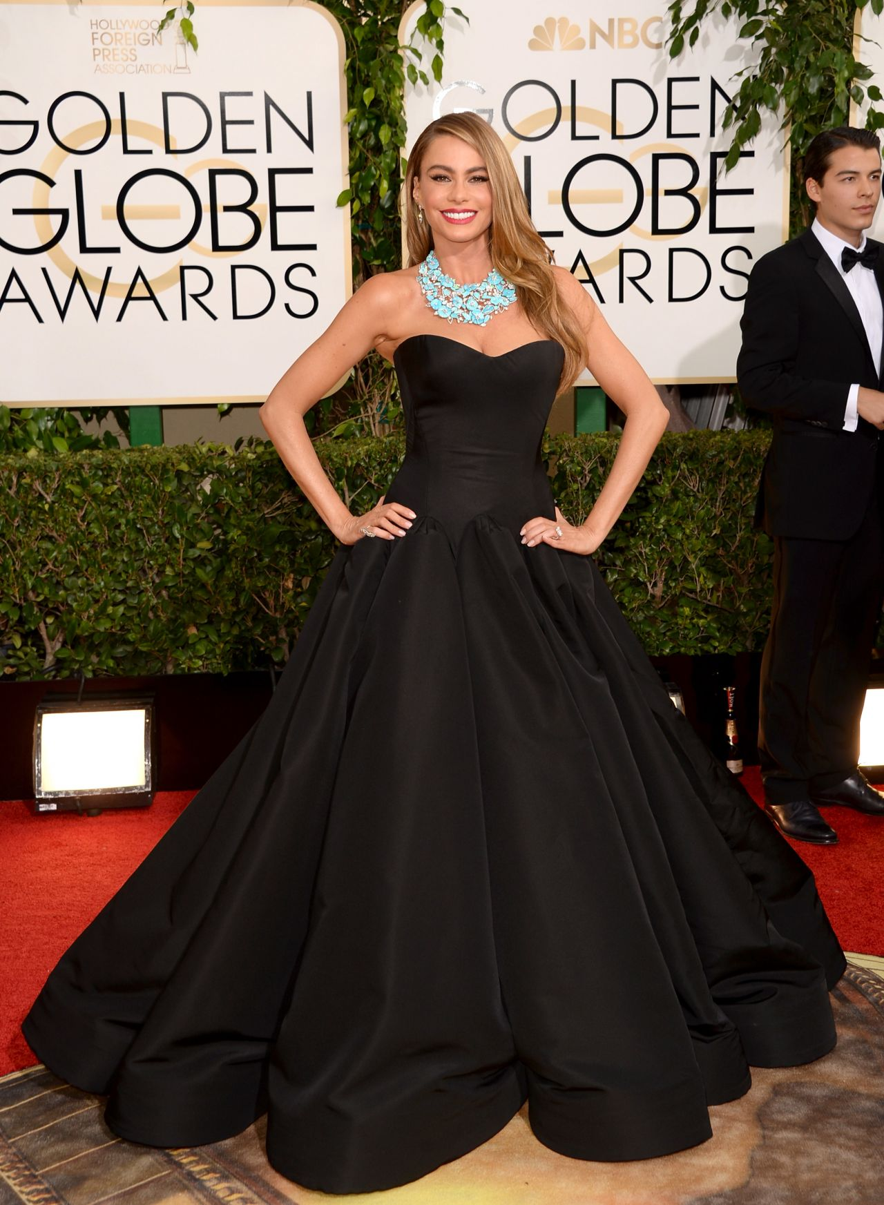Sofia Vergara on Red Carpet - 2014 Golden Globe Awards