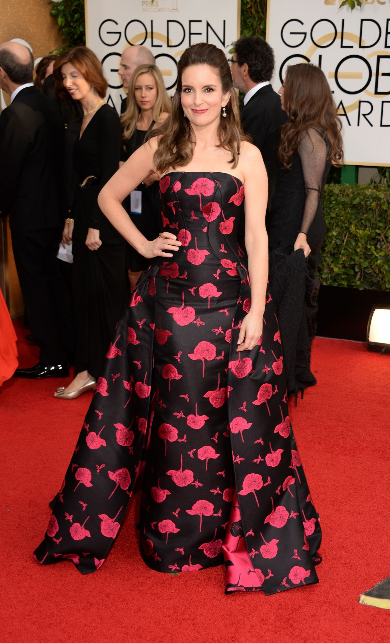 Tina Fey at Golden Globe Awards 2014