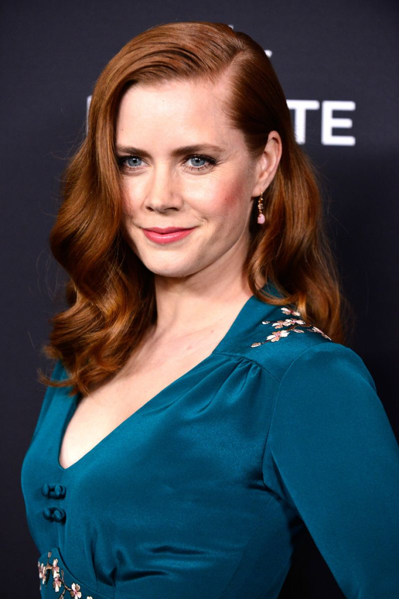 Amy Adams - 16th Costume Designers Guild Awards in Beverly Hills, February 2014