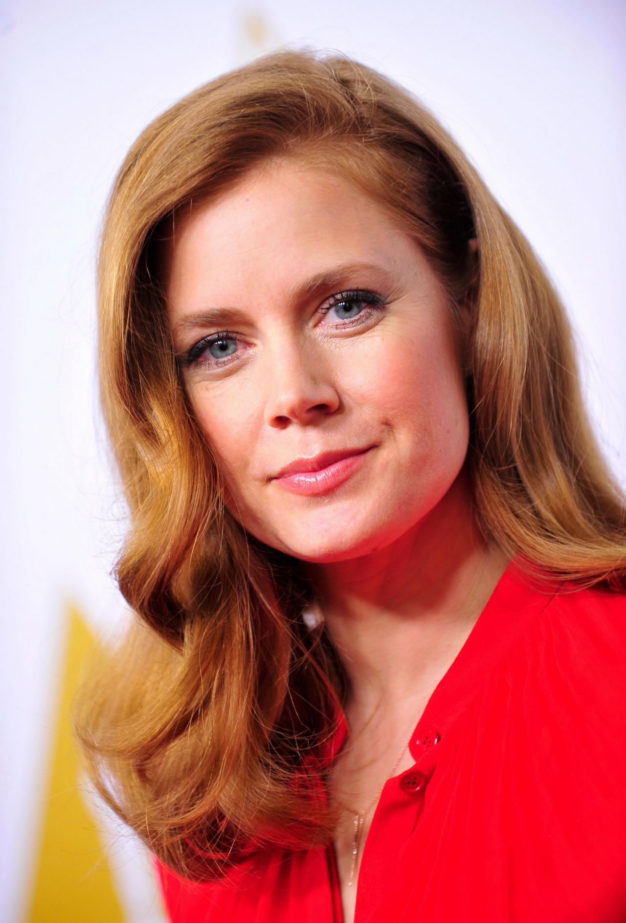 Amy Adams Oscars Nominees Luncheon February 2014