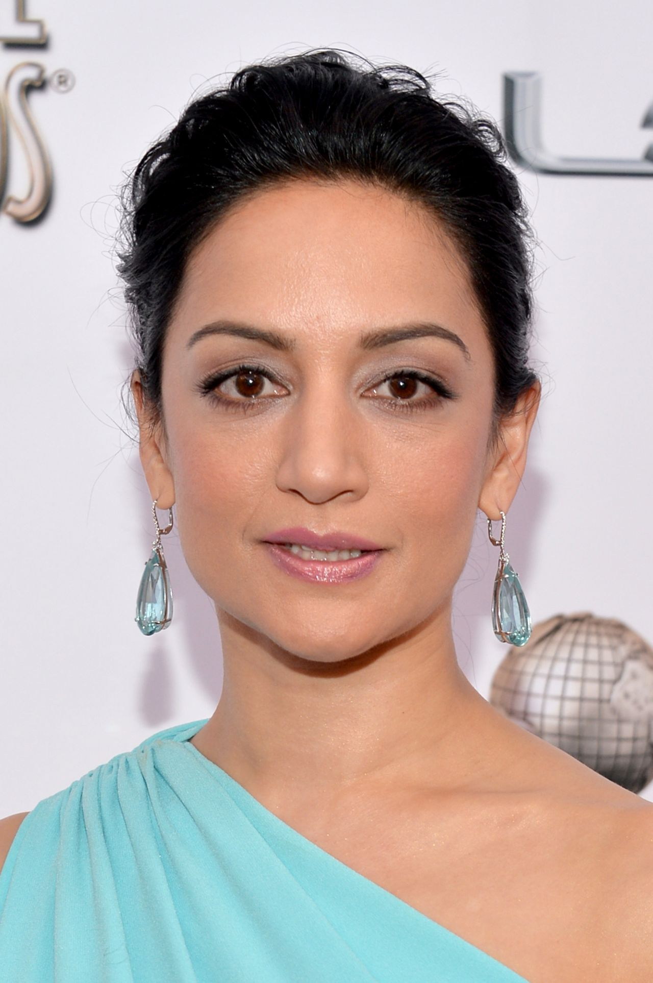 Archie Panjabi Wearing Ports 1961 Gown – 2014 NAACP Image Awards in Pasadena