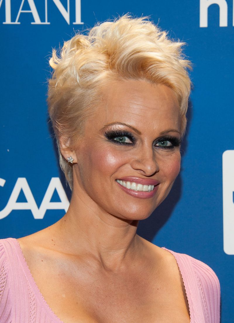 Pamela Anderson at Help Haiti Gala, January 2014