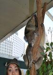 Sarah Hyland Visited Sydney Zoo - Australia, Feb. 2014