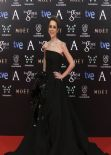 Silvia Abascal - 2014 Goya Film Awards