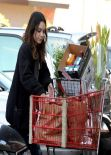 Vanessa Hudgens - Shopping Time - Trader Joe