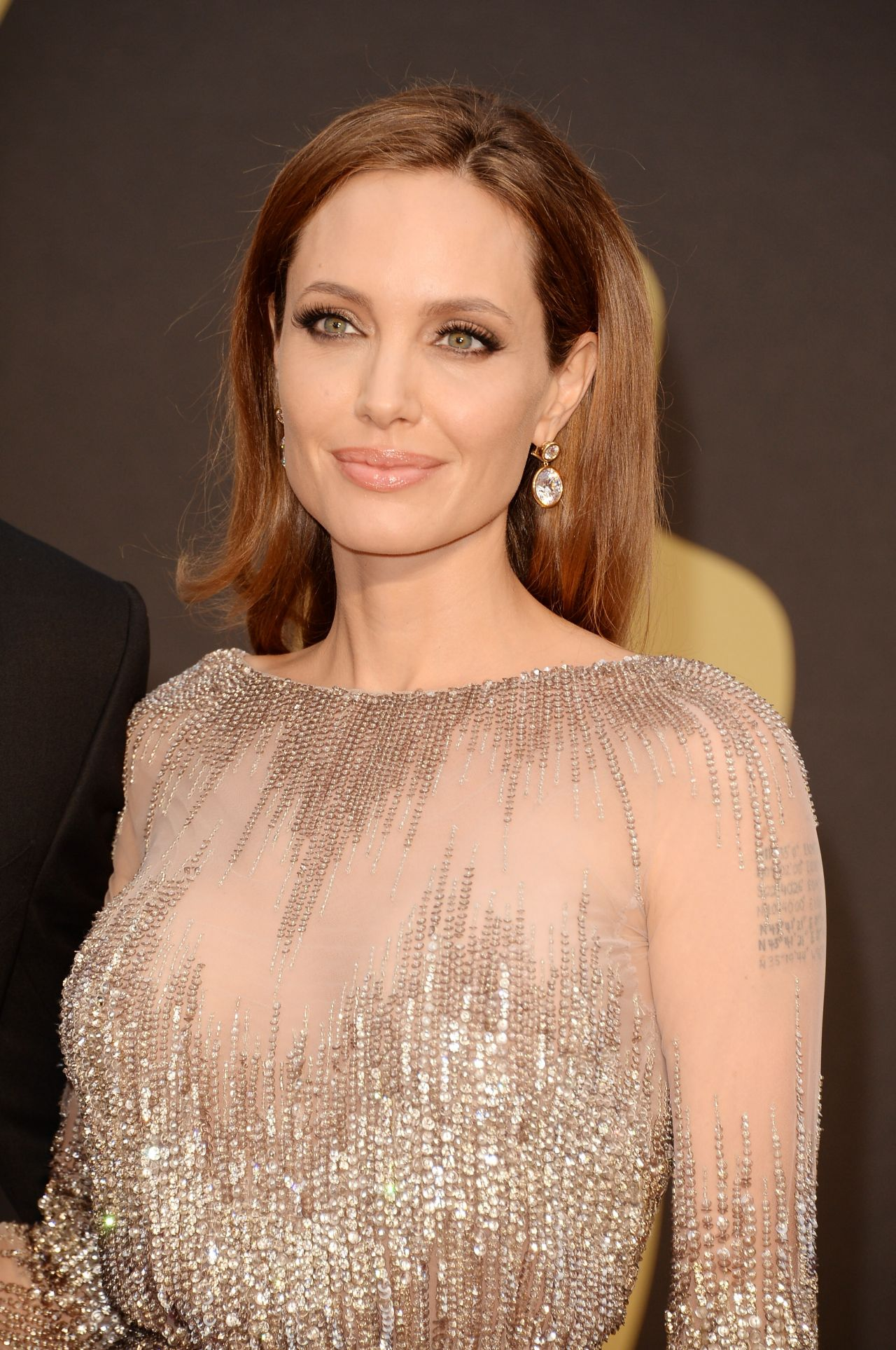 Angelina Jolie in Elie Saab Couture With Diamond Earrings by Robert Procop - 2014 Oscars