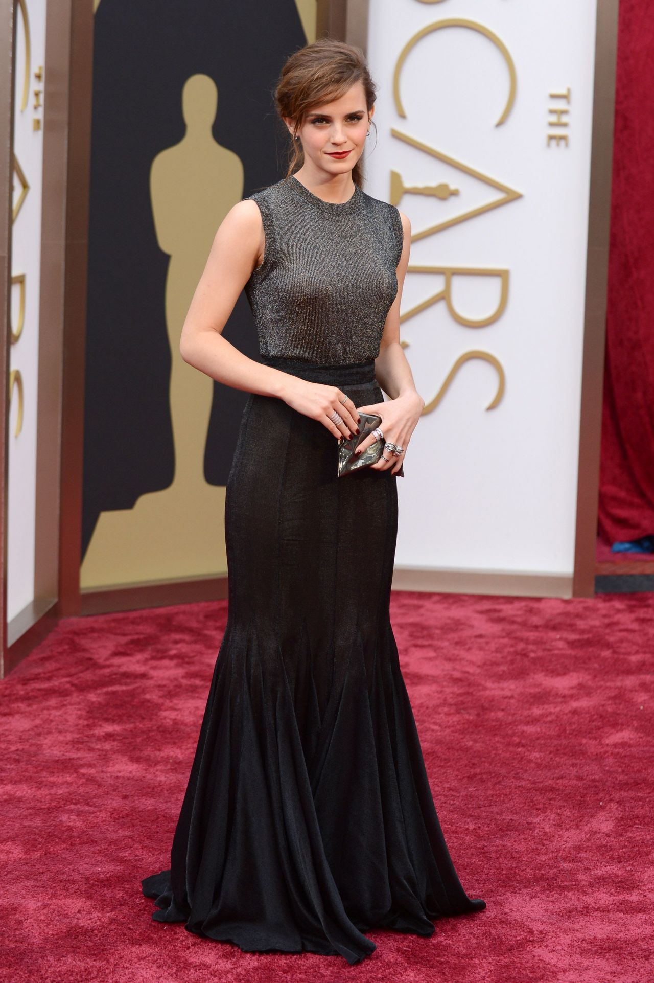 Emma watson wearing vera wang dress 2014 oscars - Red carpet oscar dresses ...