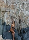 Madalina Diana Ghenea in a Bikini - Facebook, March 2014