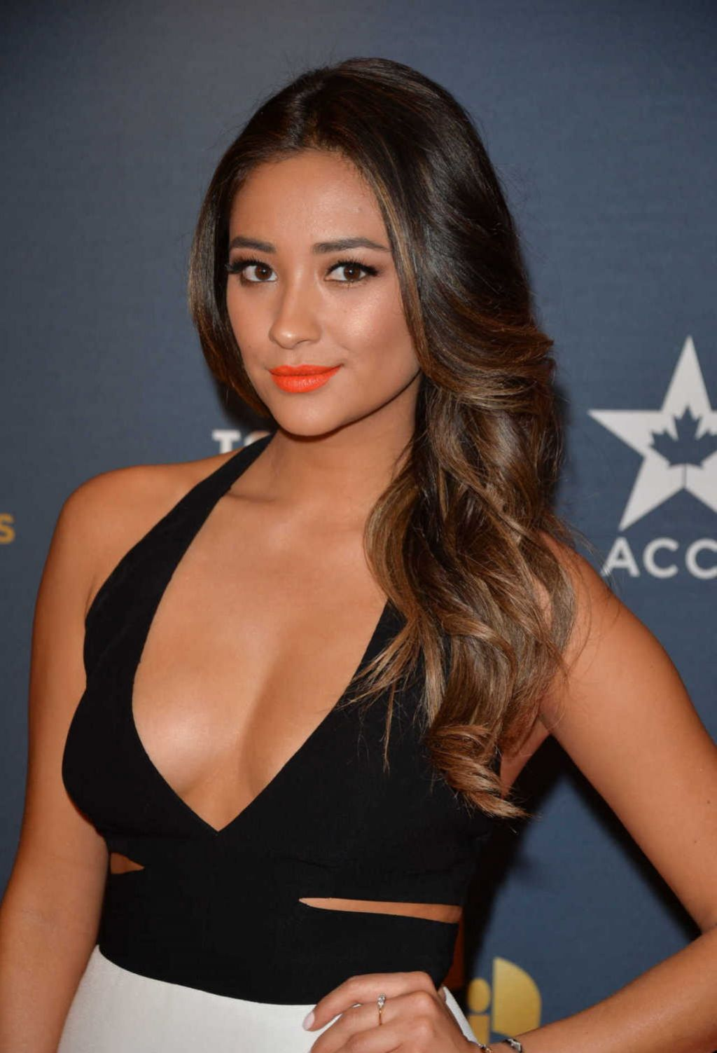 Shay Mitchell - 2014 Canadian Screen Awards