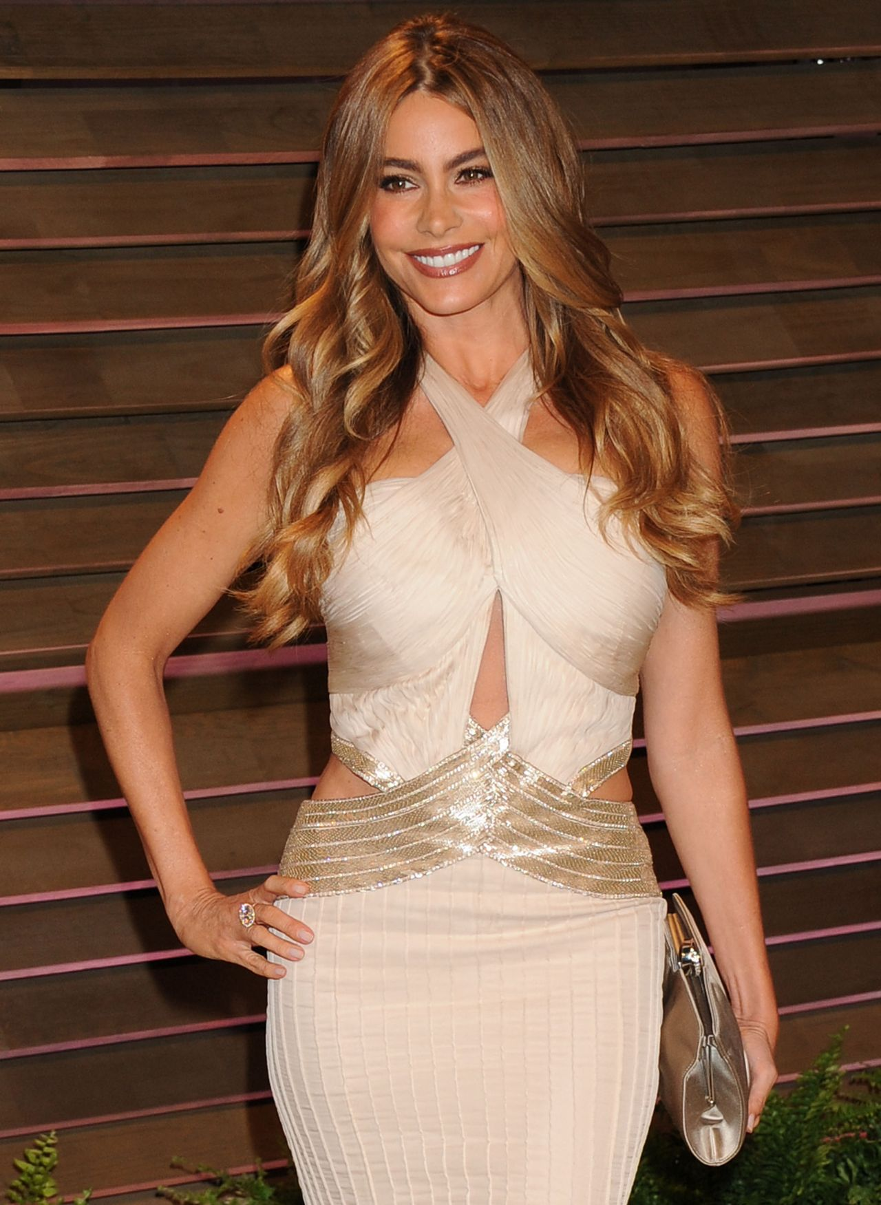 Sofia Vergara Wearing Roberto Cavalli Gown - 2014 Vanity Fair Oscar Party
