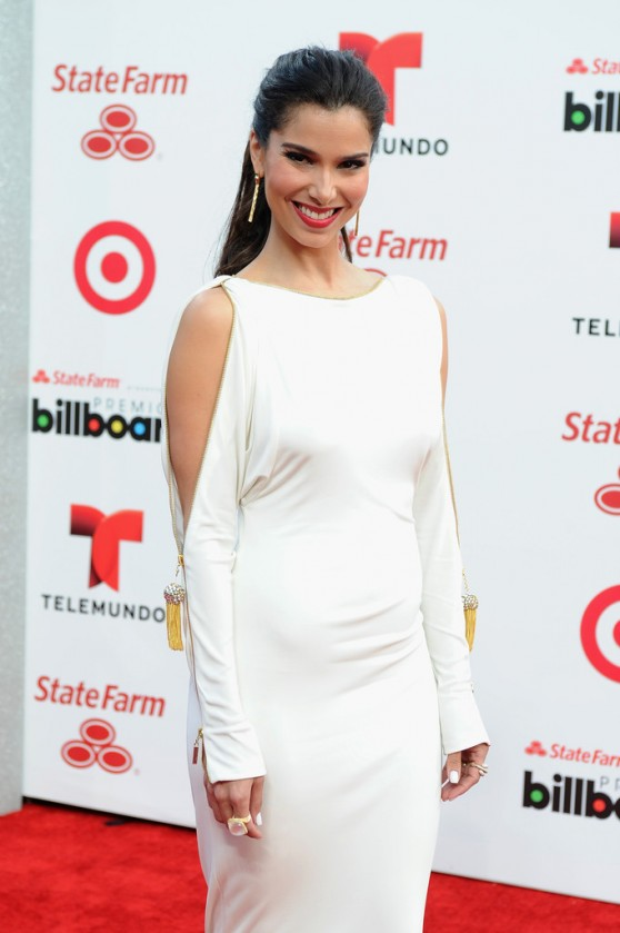 Roselyn-Sanchez_2014-1