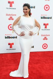 Roselyn-Sanchez_2014-2