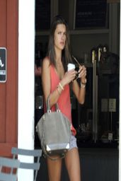 Alessandra Ambrosio - Brentwood Country Mart in Los Angeles - April 2014