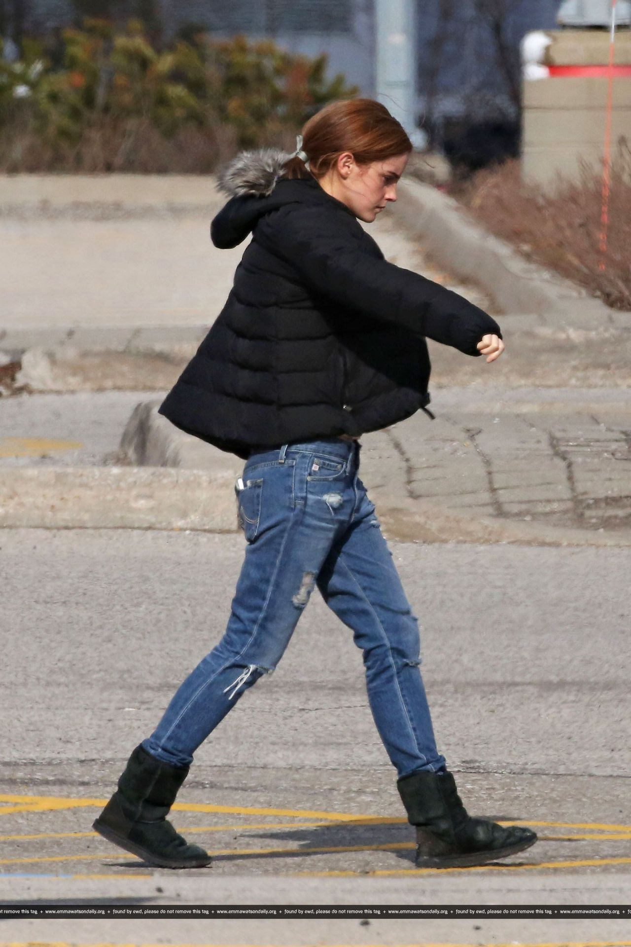 Emma Watson In Jeans Out In Toronto April 2014