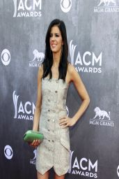 Karen Fairchild - 2014 Academy of Country Music Awards