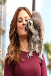 Maria Menounos - on the Set of Extra in LA - April 2014