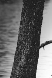 Nina Agdal - Fred Raynaud/Banana Moon Outtakes 2014