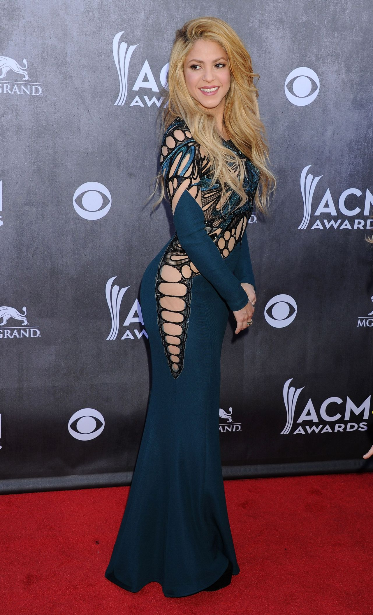 Shakira In Zuhair Murad Dress 2014 Academy Of Country