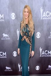 Shakira in Zuhair Murad Dress - 2014 Academy Of Country Music Awards Red Carpet in Las Vegas