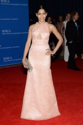 Freida Pinto – 2014 White House Correspondents' Dinner in Washington