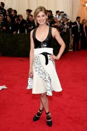 Rosamund Pike Wearing Louis Vuitton – 2014 Met Costume Institute Gala