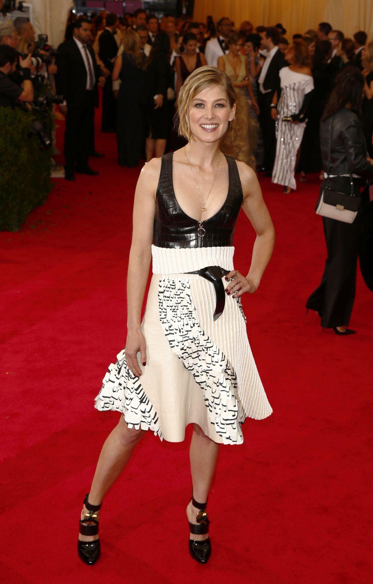 Rosamund Pike Wearing Louis Vuitton – 2014 Met Costume ...Rosamund Pike 2014