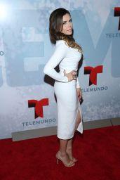 Yarel Ramos - 2014 Telemundo Upfront