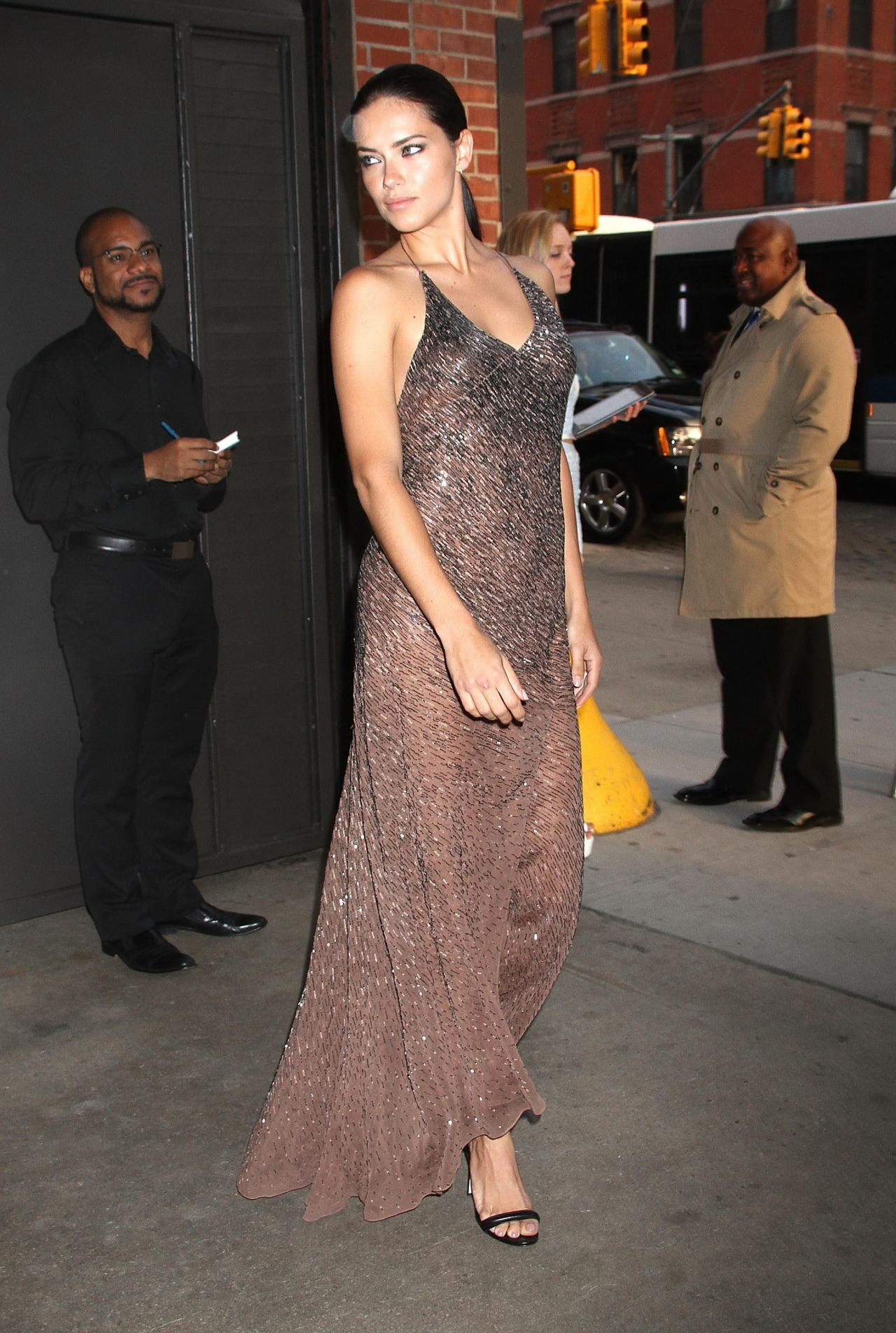 Adriana Lima In Jason Wu Gown 2014 Young Friends Of