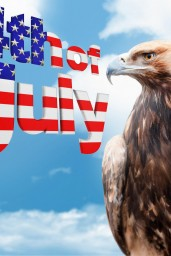 4th-of-July-proud-eagle