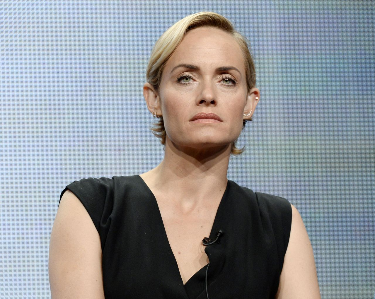 Amber Valletta - Turner Broadcasting 2014 Summer TCA in Beverly Hills