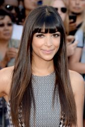 Hannah Simone – 'Sex Tape' Movie Photocall in Los Angeles