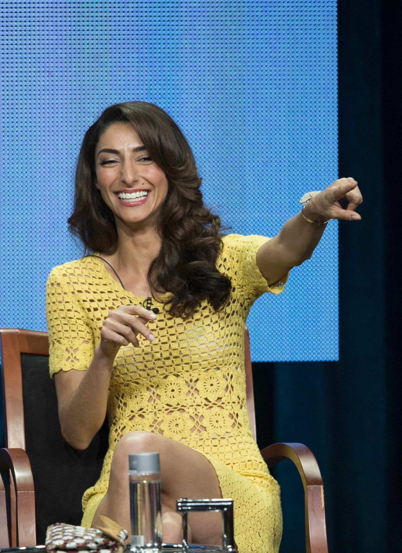 Necar Zadegan - NBC Universal Summer TCA Tour - July 2014