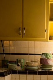 Jane Levy -
