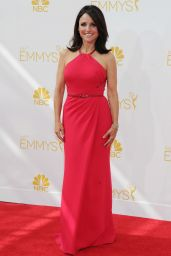 Julia Louis-Dreyfus – 2014 Primetime Emmy Awards in Los Angeles