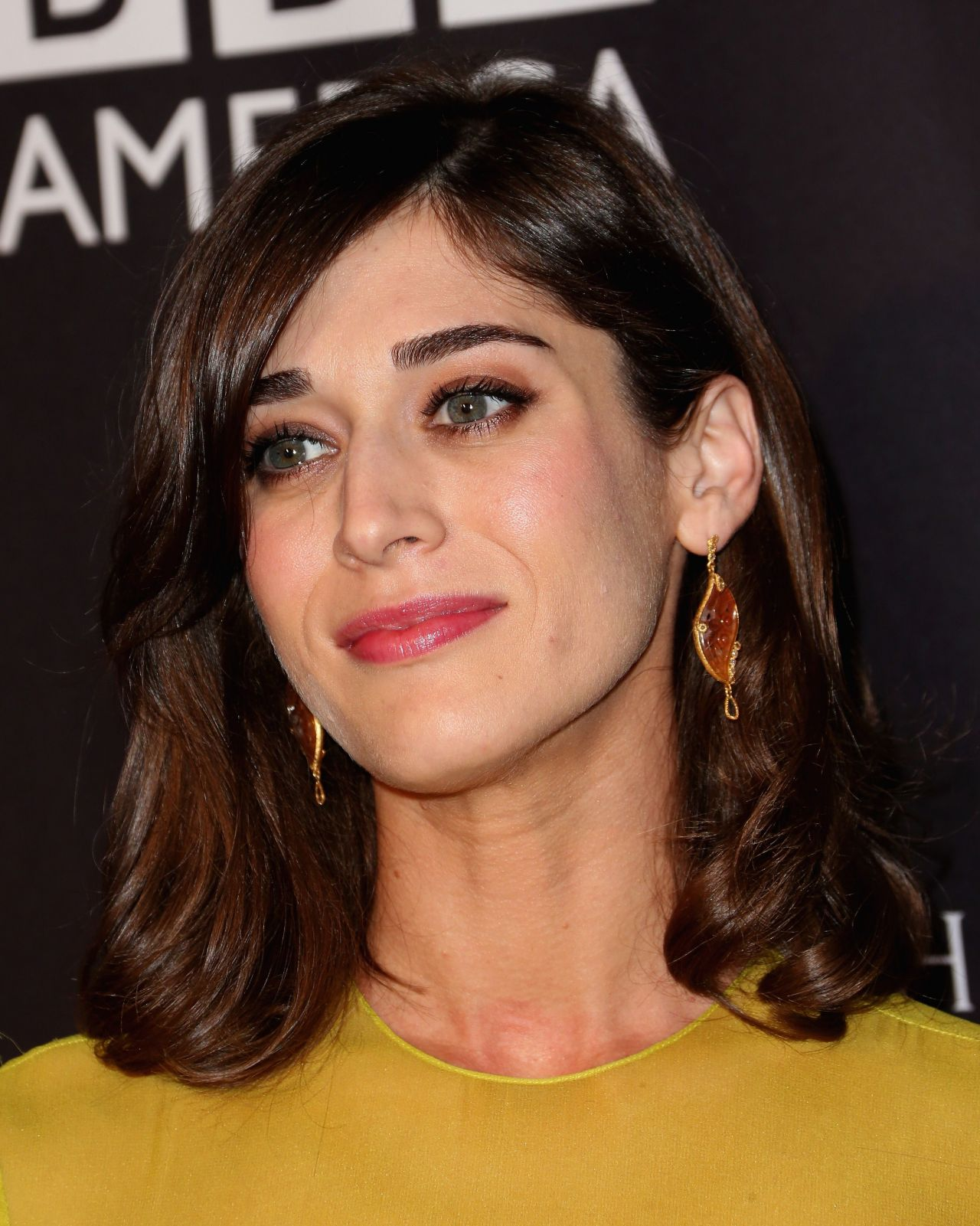 acclaimed actress lizzy caplan - HD 3012×3768